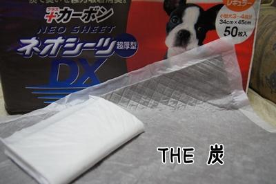 DSC09847-10.jpg