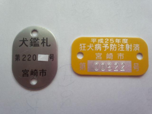 DSC_0414.jpg