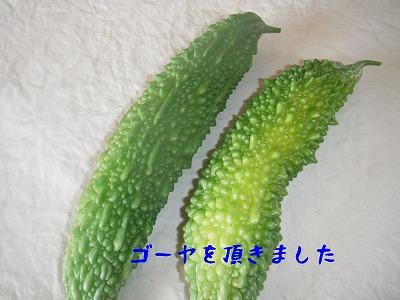 s-11_20130720185146.jpg