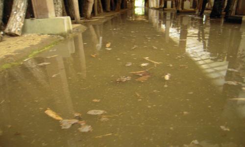 ハウスに浸水