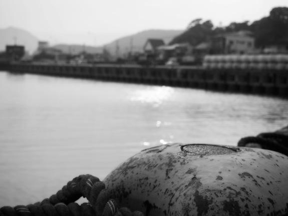 shio_港a