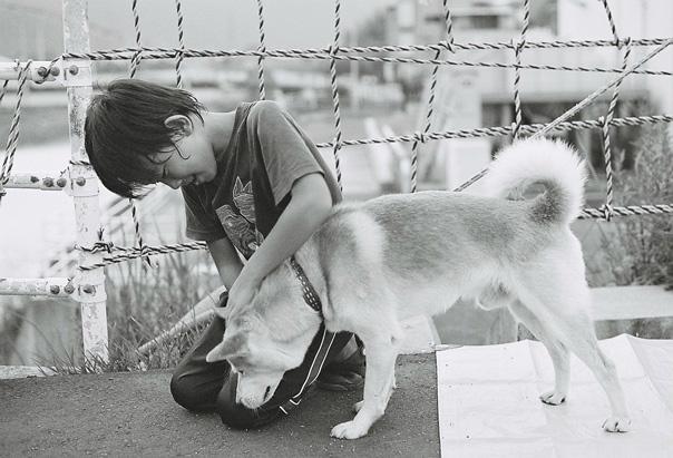 shio_ハルとイヌa