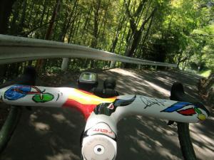 林道的な道