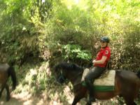 馬でトレッキング