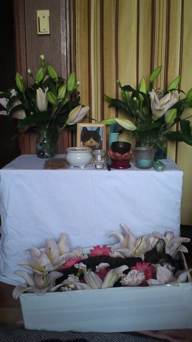 ちち子祭壇2