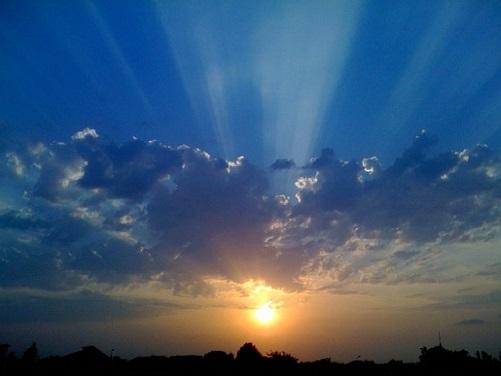 sun-trees-nature-sky-sunset-clouds_121-83554.jpg