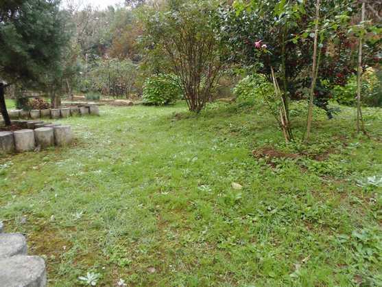 20141124 晩秋の庭