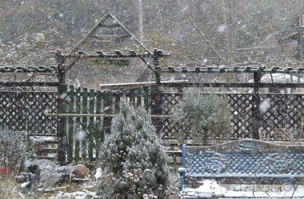 2,5雪の山庭ー1