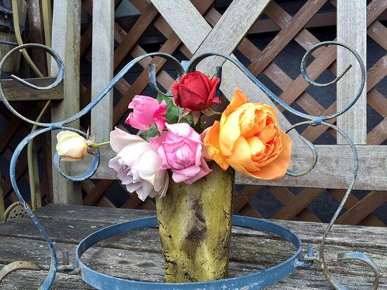 12,17ベランダのバラ