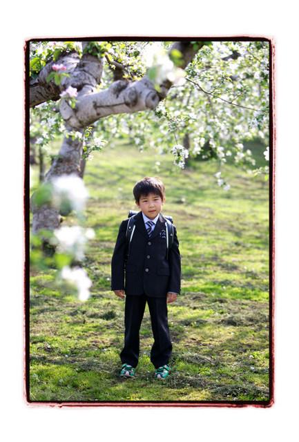 弘前 りんご公園 入学 記念 撮影 写真 出張撮影 ロケーション