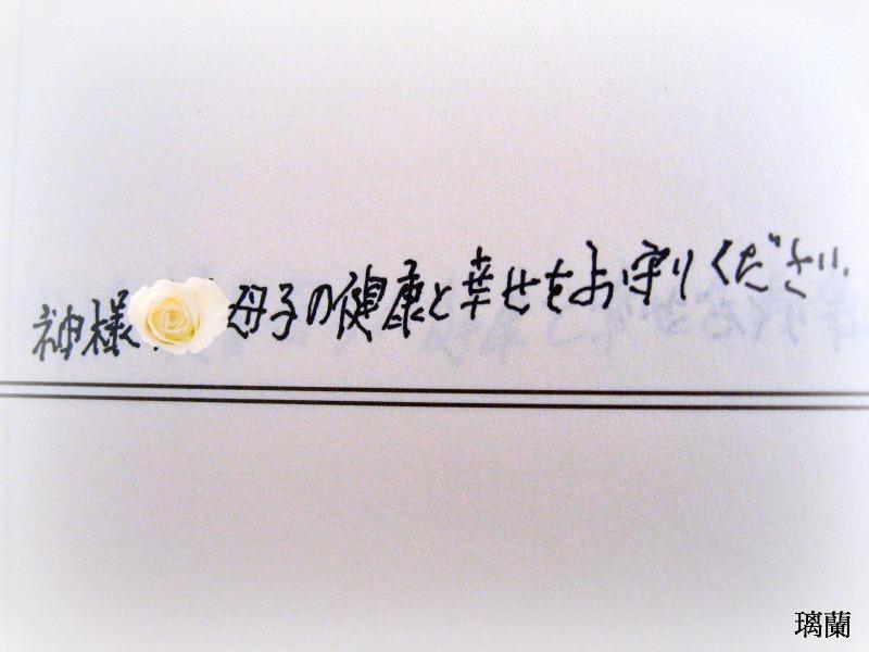 IMG_0766111.jpg