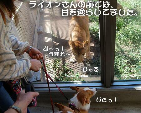 06_20131006153843dbb.jpg