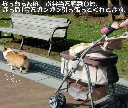 10_20131014143054d93.jpg