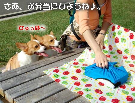 11_201310141430586ff.jpg