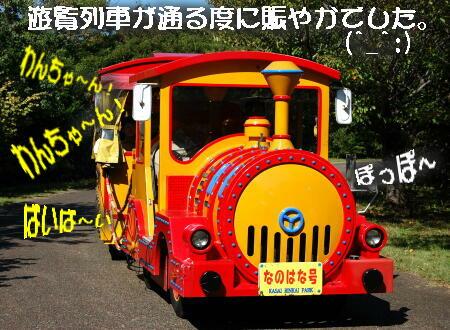 12_201310141444295b0.jpg