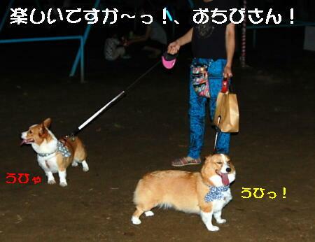 2013082806.jpg