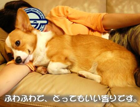 DSC_0362.jpg