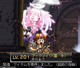 Maple130408_163024.jpg