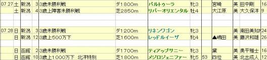 2013072728想定