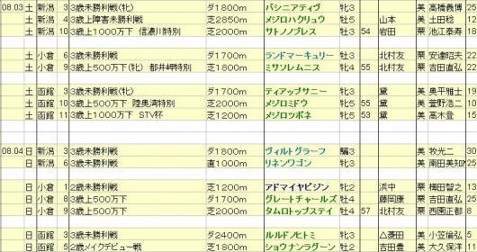 2013080304想定