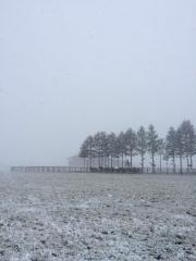 20141113 レイクヴィラファームに冬の訪れ^^)