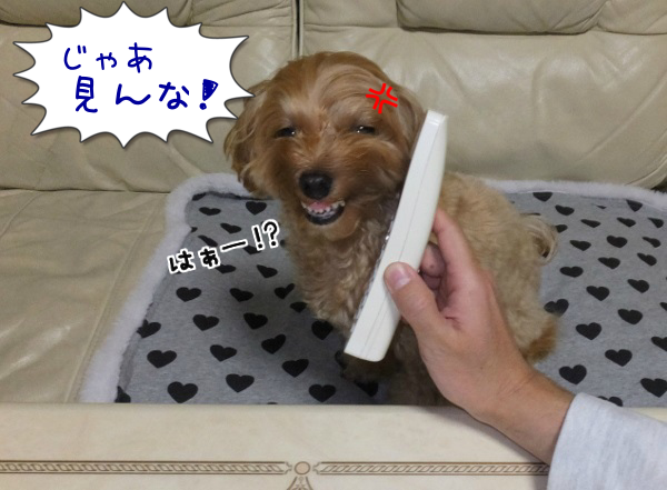 20140126-6.png