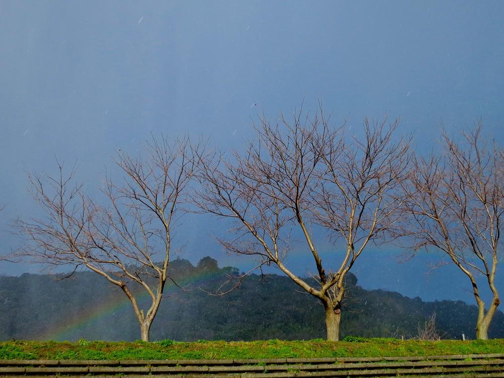 雨と雪と虹と