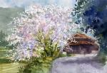 桜咲く山里