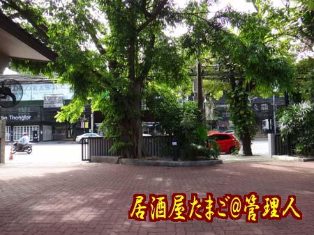 20130611_1_S1.jpg