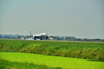 タイ航空のエアバス350XWB画像