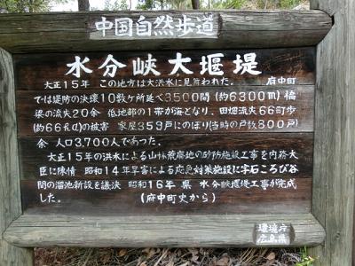 5-3-10.jpg