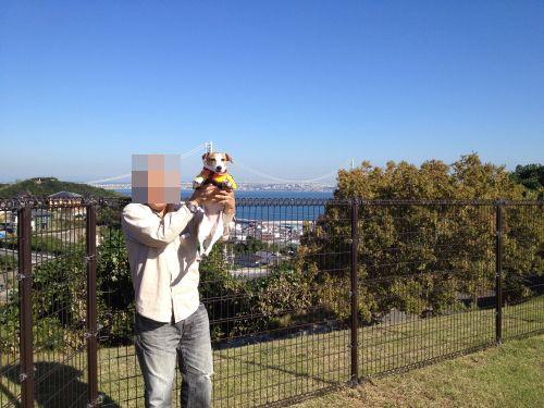 DPP_15_2014110322163105e.jpg