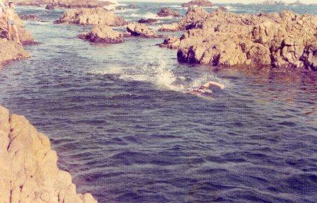 伊豆の海で泳ぐマミィ
