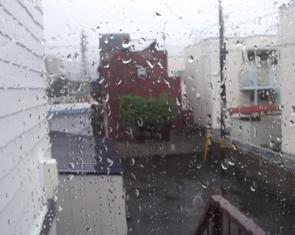 毎日、雨が降る