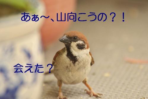 020_20130531213729.jpg