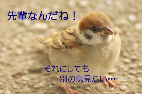 130_20130709202027.jpg