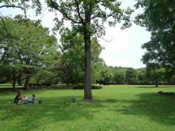 大庭城跡公園