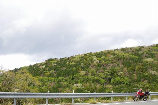 県道127号線 2