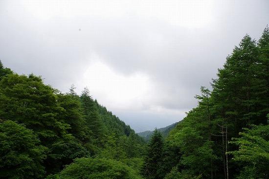柳沢峠 2