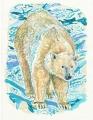bear122.jpg