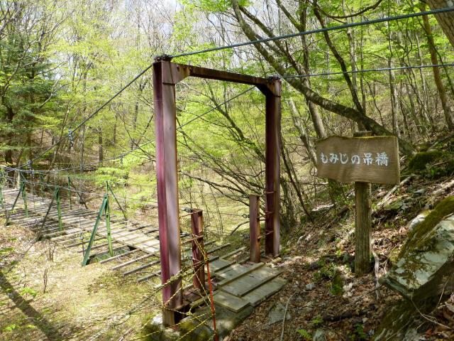 もみじの吊橋4