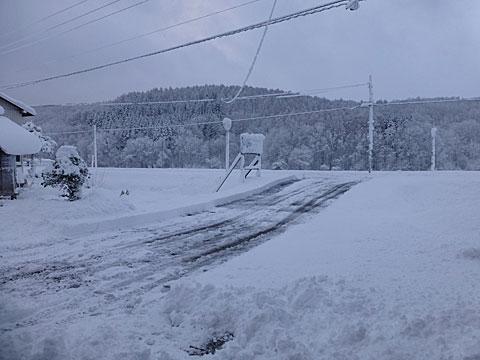 14 11/4 初除雪