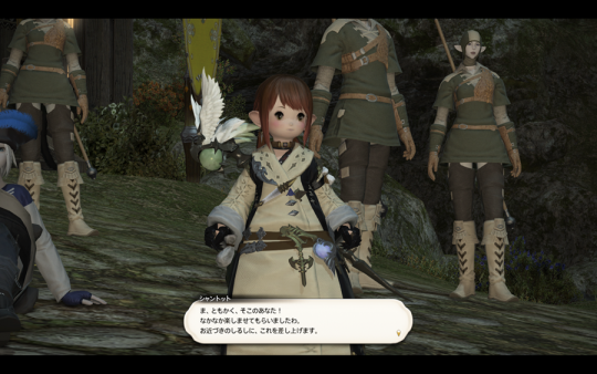 FF14_201401_058.png