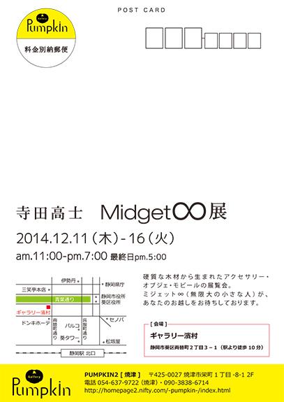 寺田2014濱村1 (1)