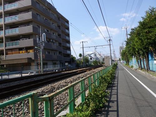 IMGP4533.jpg