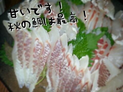 20131114202406319.jpg