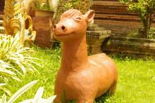 タイ雑貨通販 泰国屋(たいこくや) タイ王国出張旅行ブログチェンマイ写真動物タイスマイル02