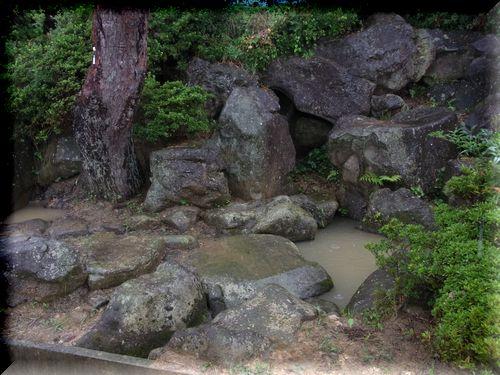 山の井清水