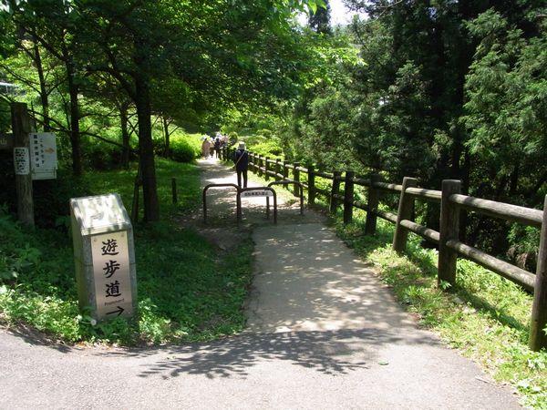 石見銀山9