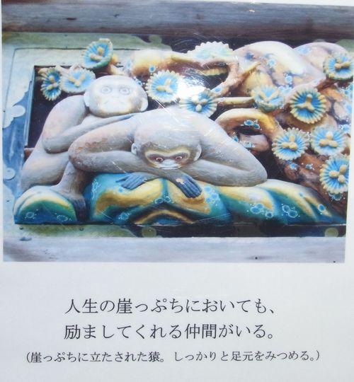 914-5.jpg